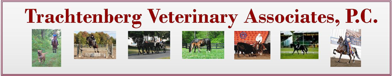 Trachtenberg Veterinary Associates, PC
